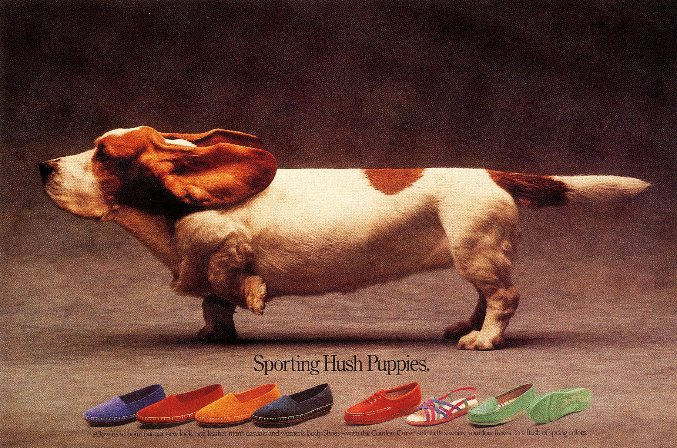 Fallon McElligott, Hush Puppies 'Sporting'-01