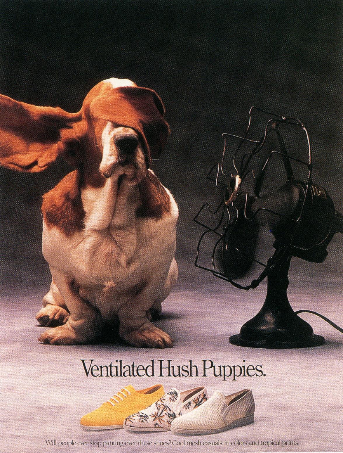 Fallon McElligott, Hush Puppies, 'Ventilated'-01