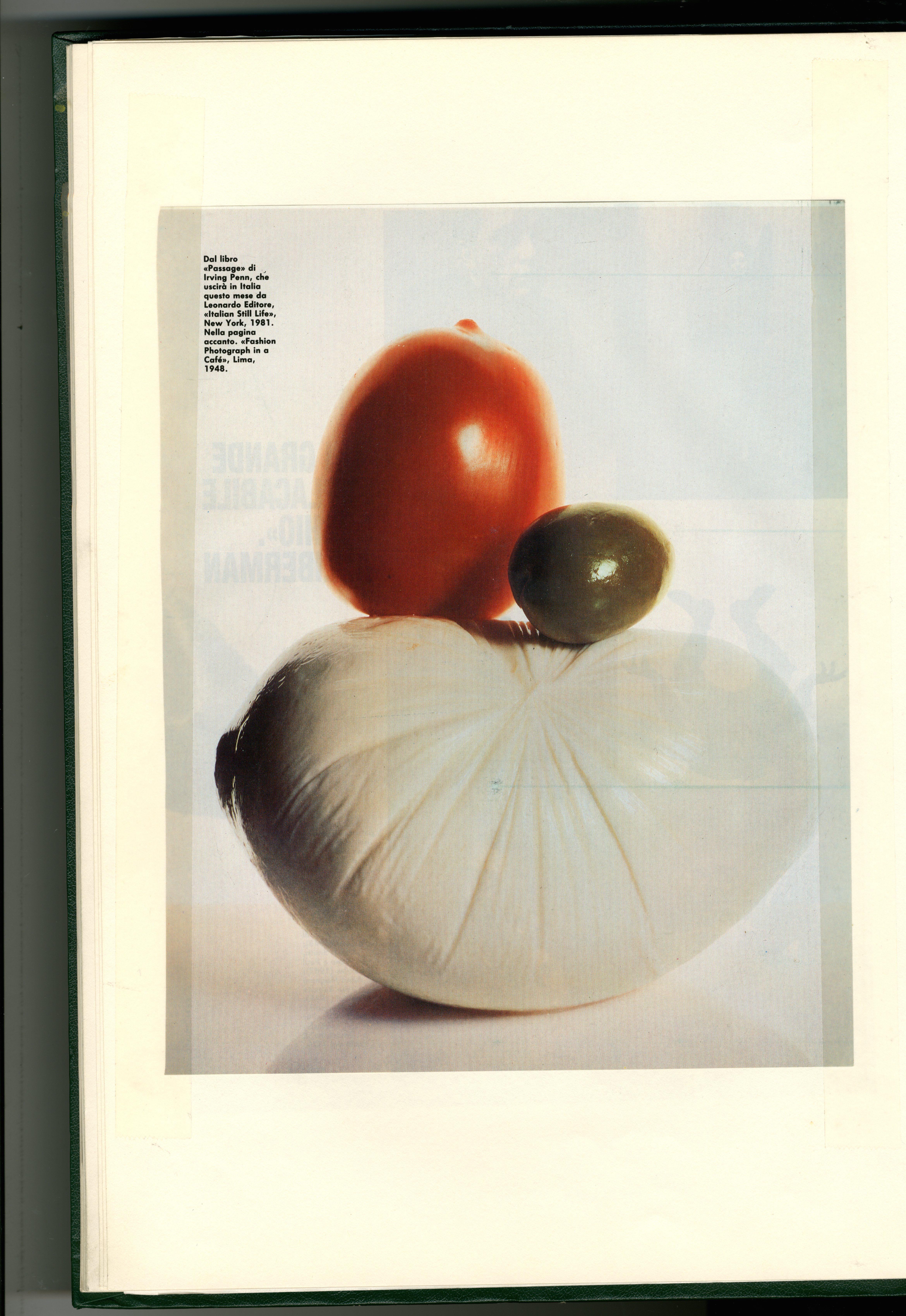 Dave Dye:Irving Penn:Italian Salad