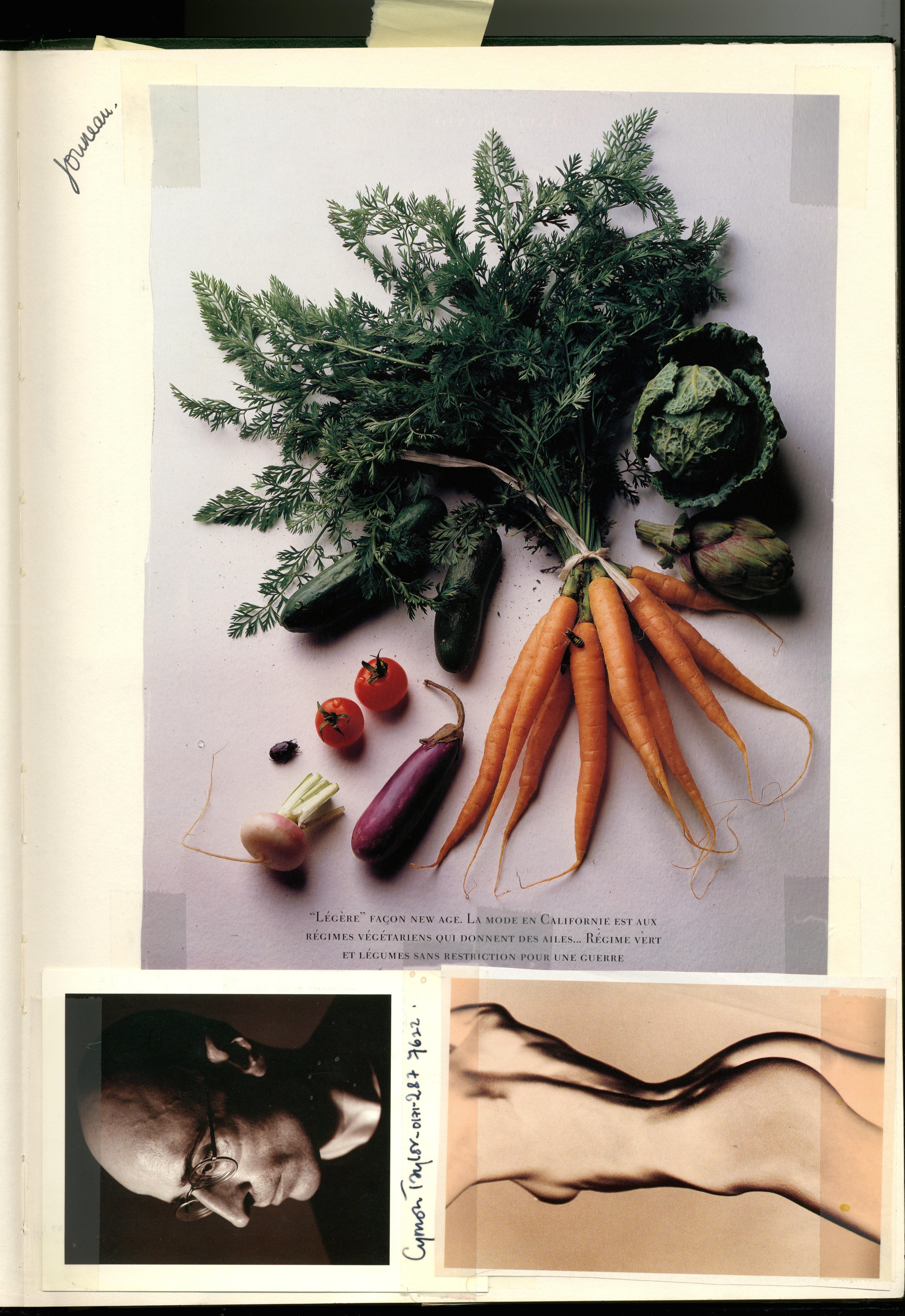 Daniel Jounneau : Vegetables  : Dave Dye