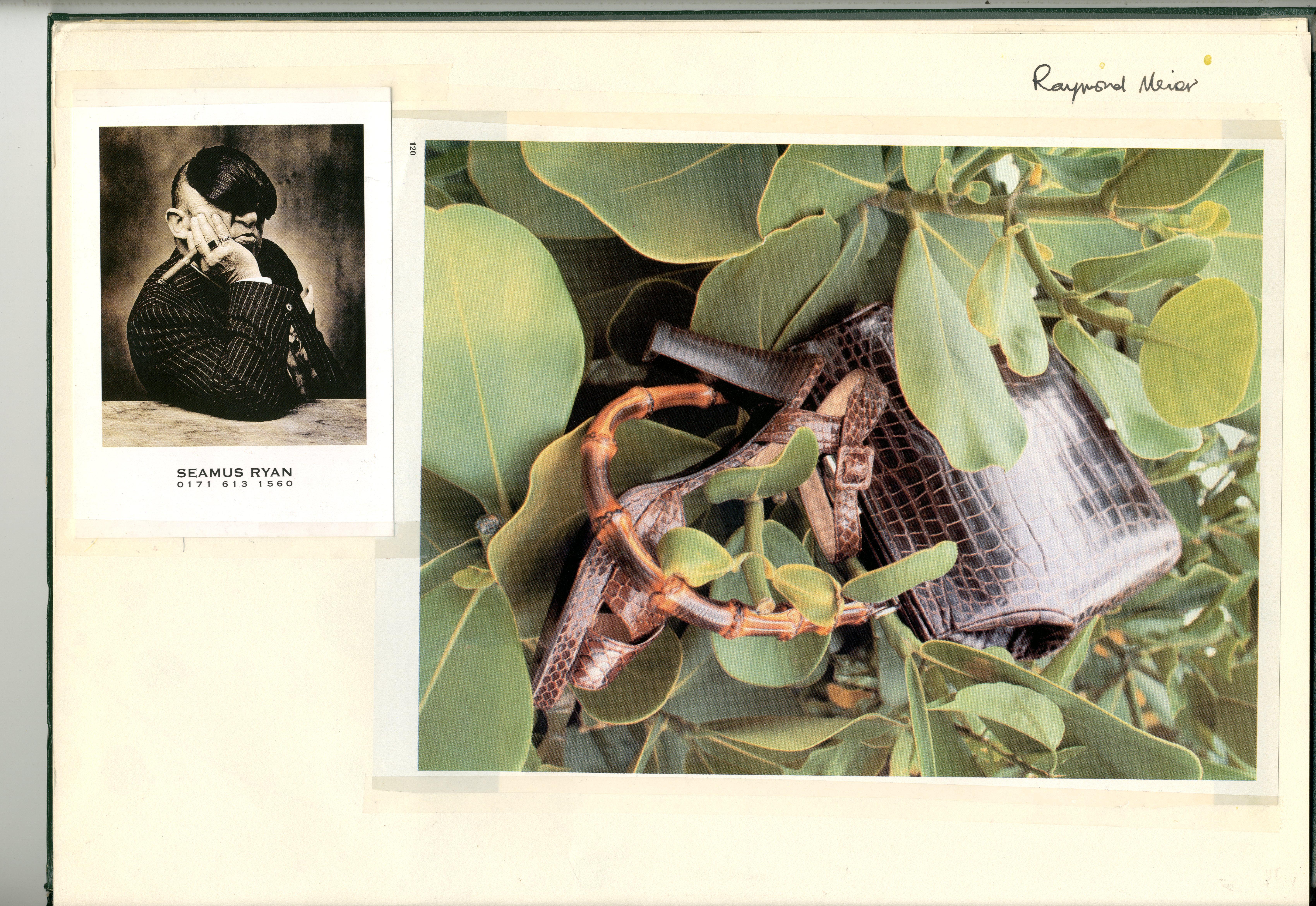 Seamus Ryan : Wig : Raymond Meier : Crocodile Handbag & Shoe : Dave Dye