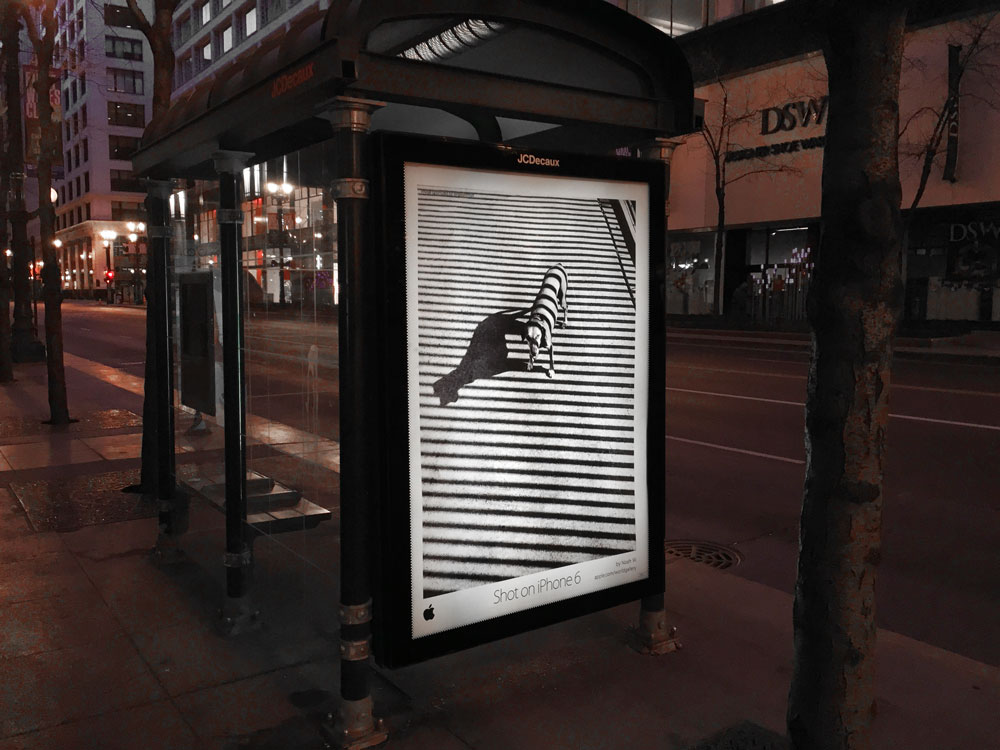 Apple-Bus-Shelter-Signage-Shot-With-iPhone-6