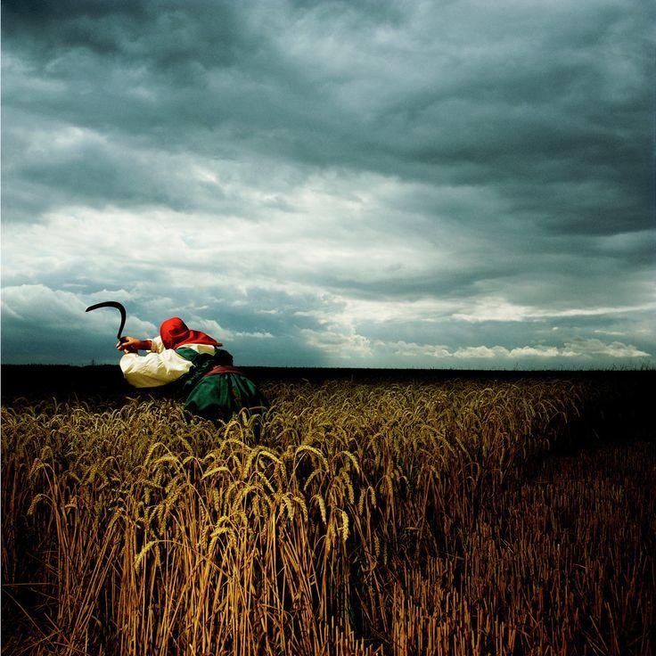Brian Griffin - Depeche Mode, Wheat