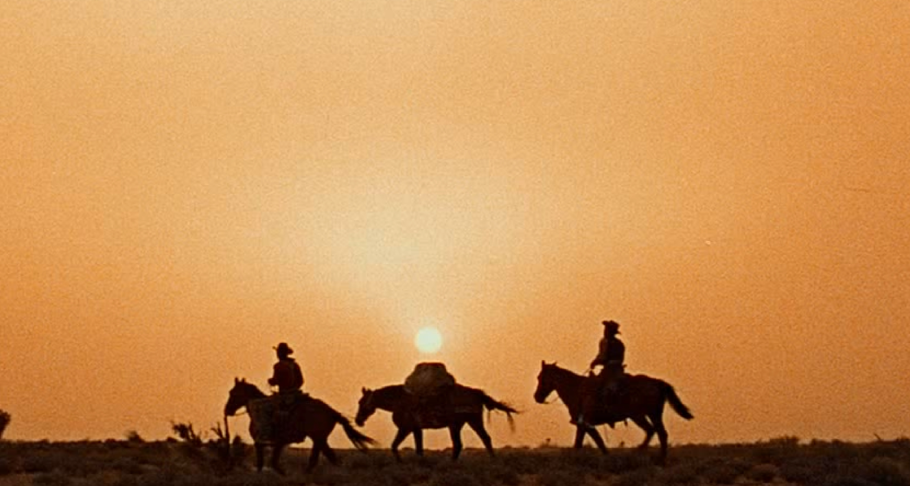 2-the-searchers-01