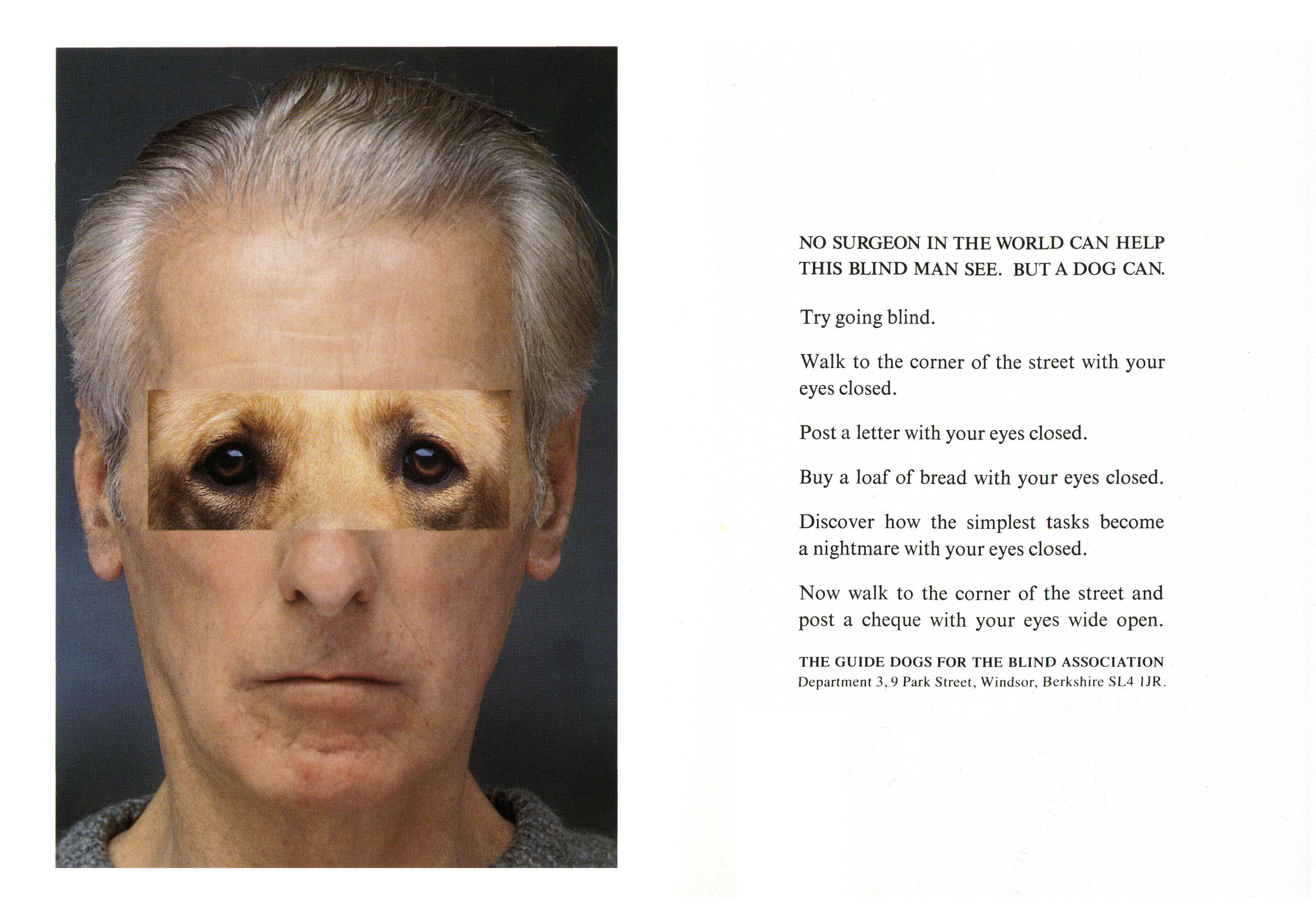 Jeff Stark, Blind 'Dog Eyes', Saatchi's-01