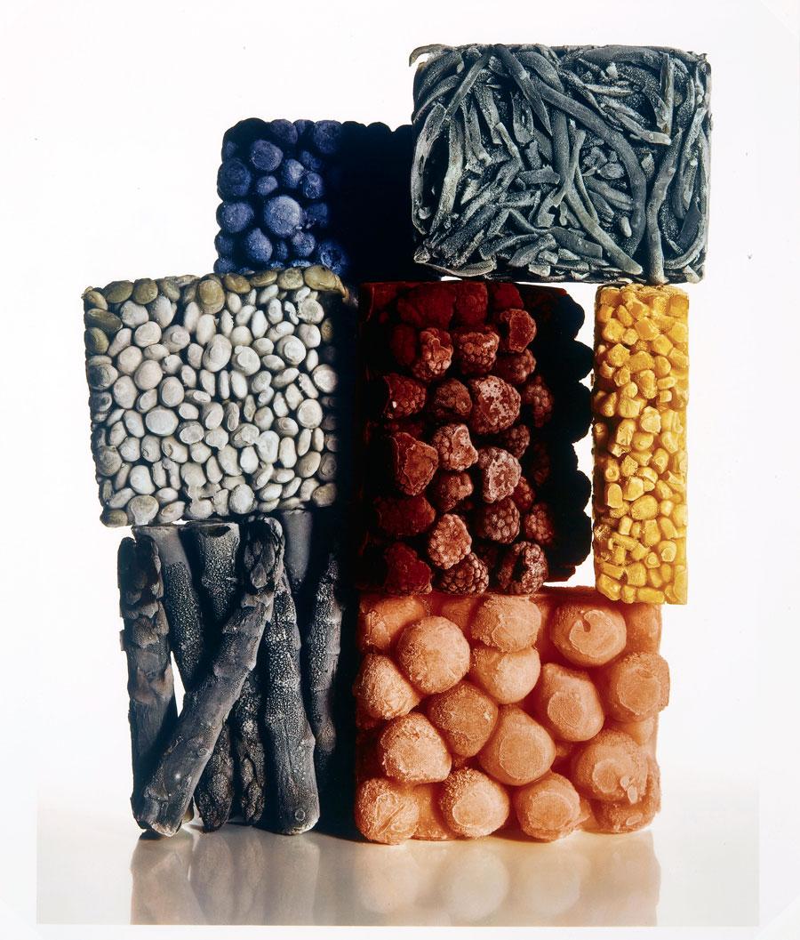 irving-penn-frozen-foods