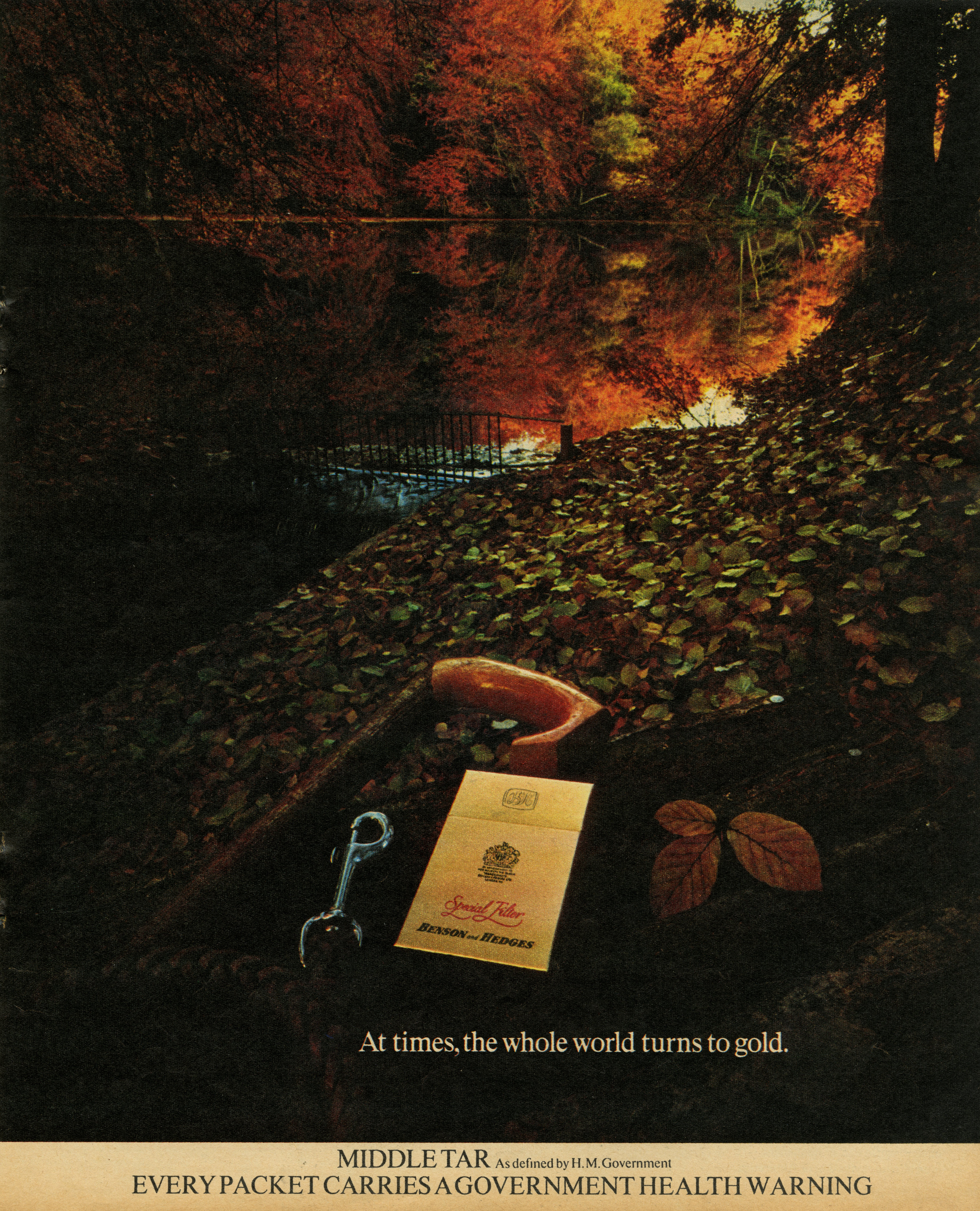 B&H Gold Box - 'Autumn Leaves', CDP-01