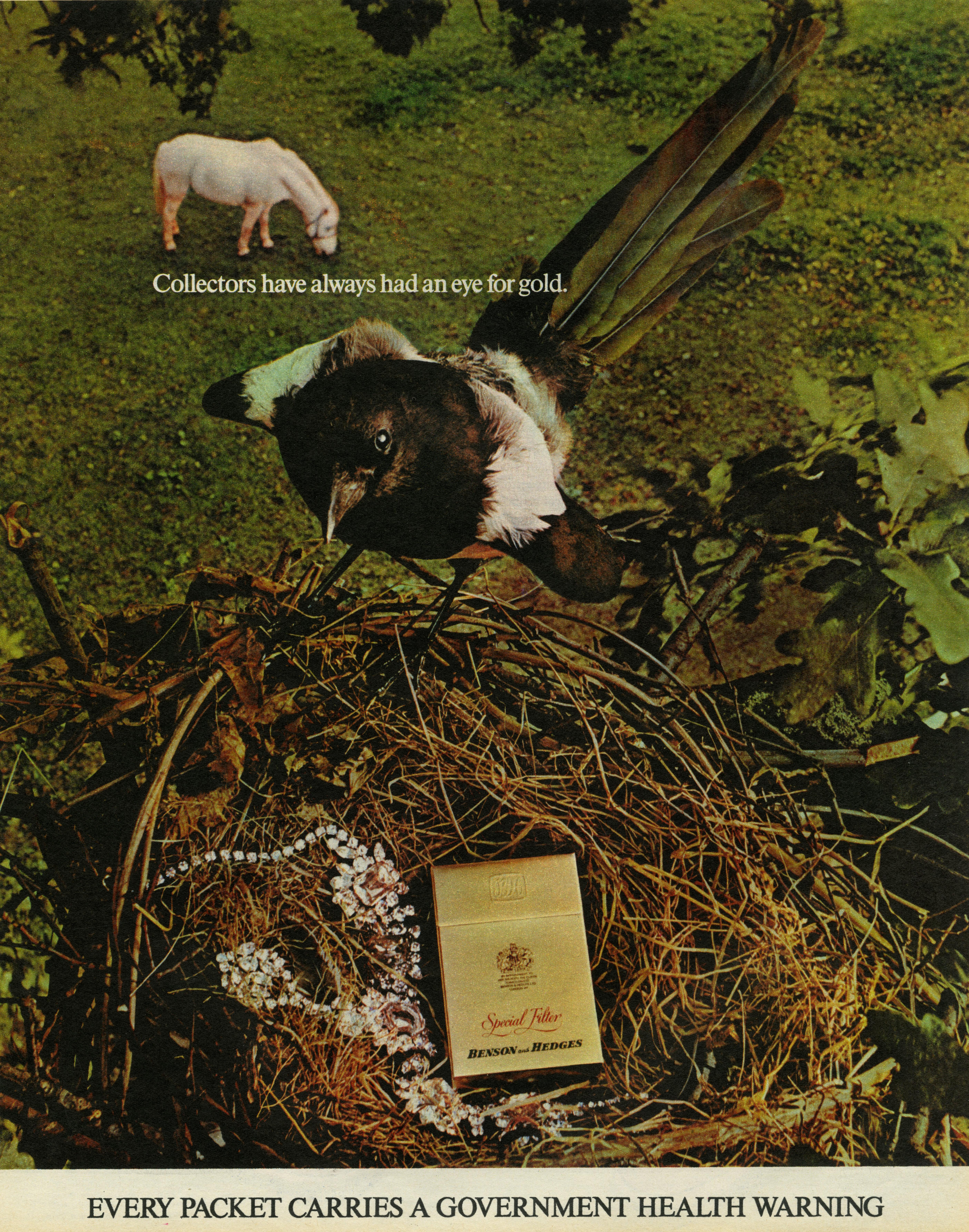 B&H Gold Box - 'Magpie', CDP-01