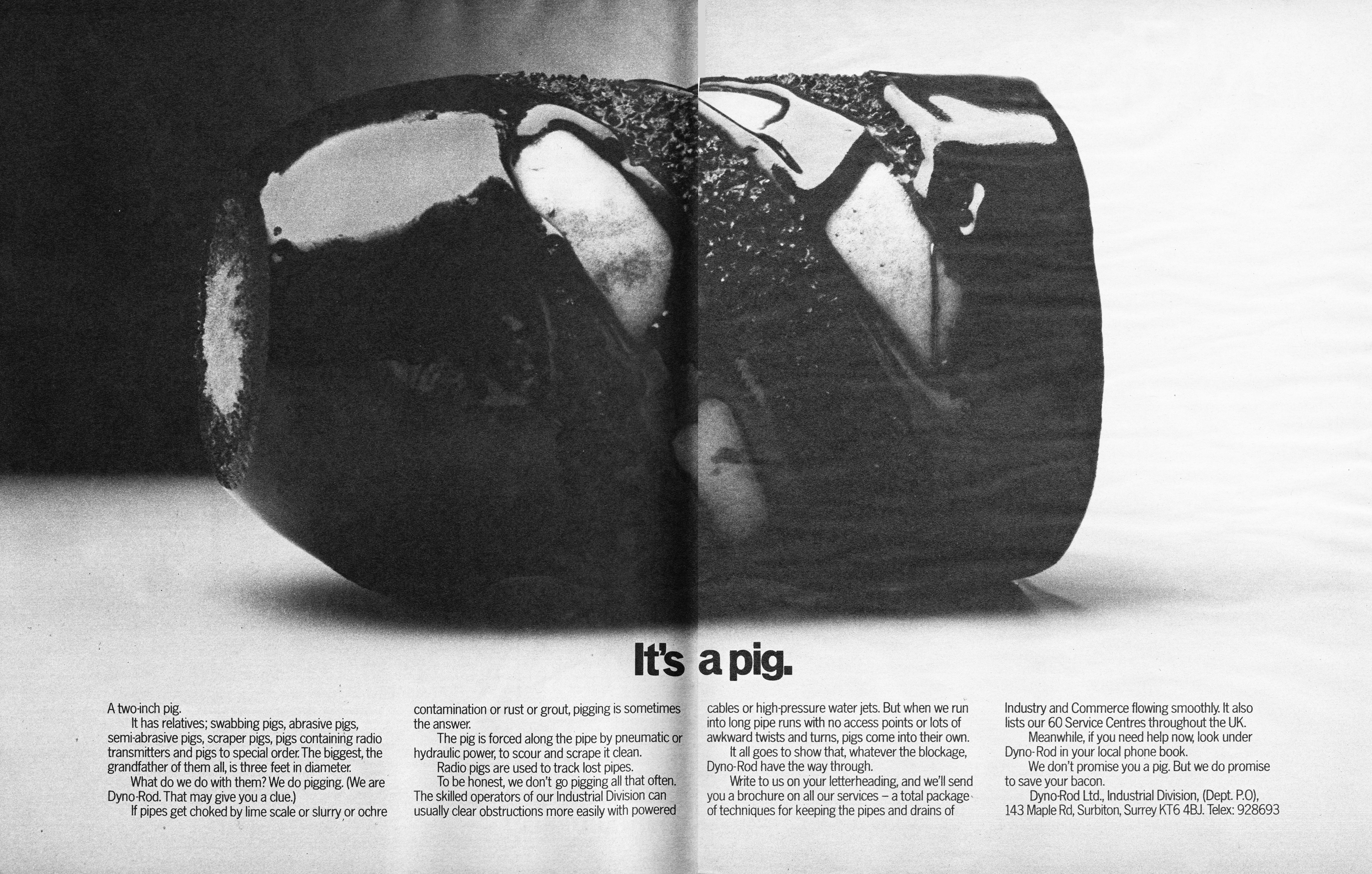 Dynarod 'Pig', David Holmes, HKR-01