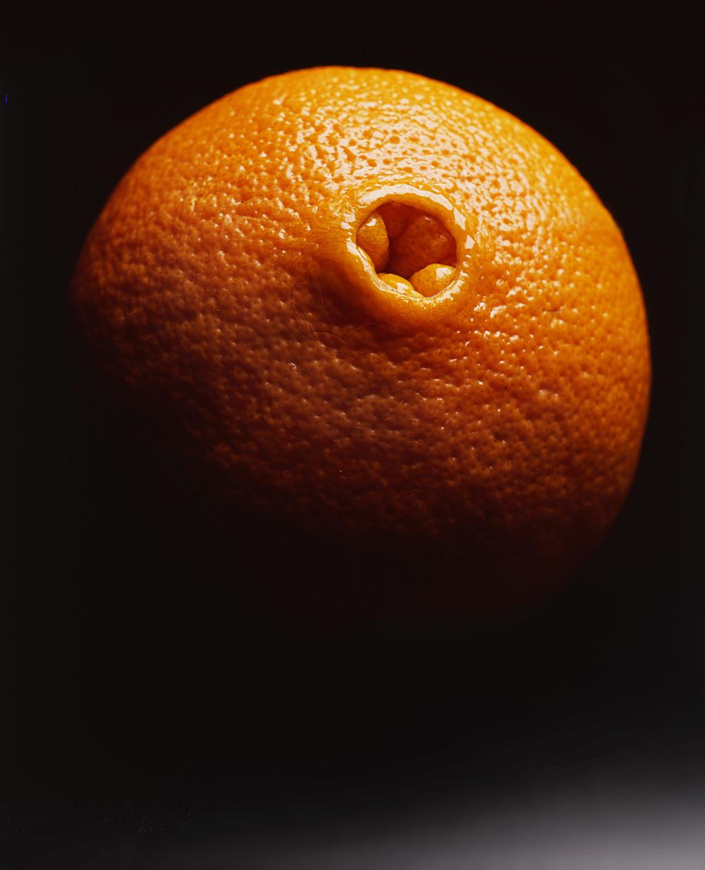 Phil Marco 'Orange'