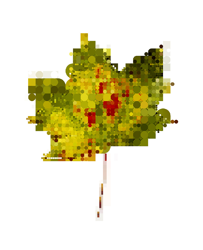 leaf-2-giles-revell-01
