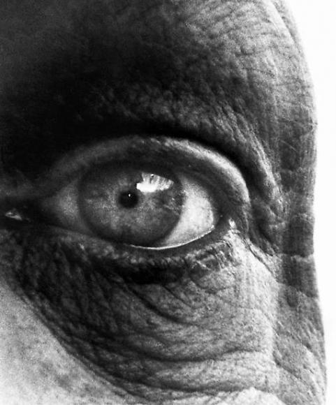 'Eye' Bill Brandt.jpg