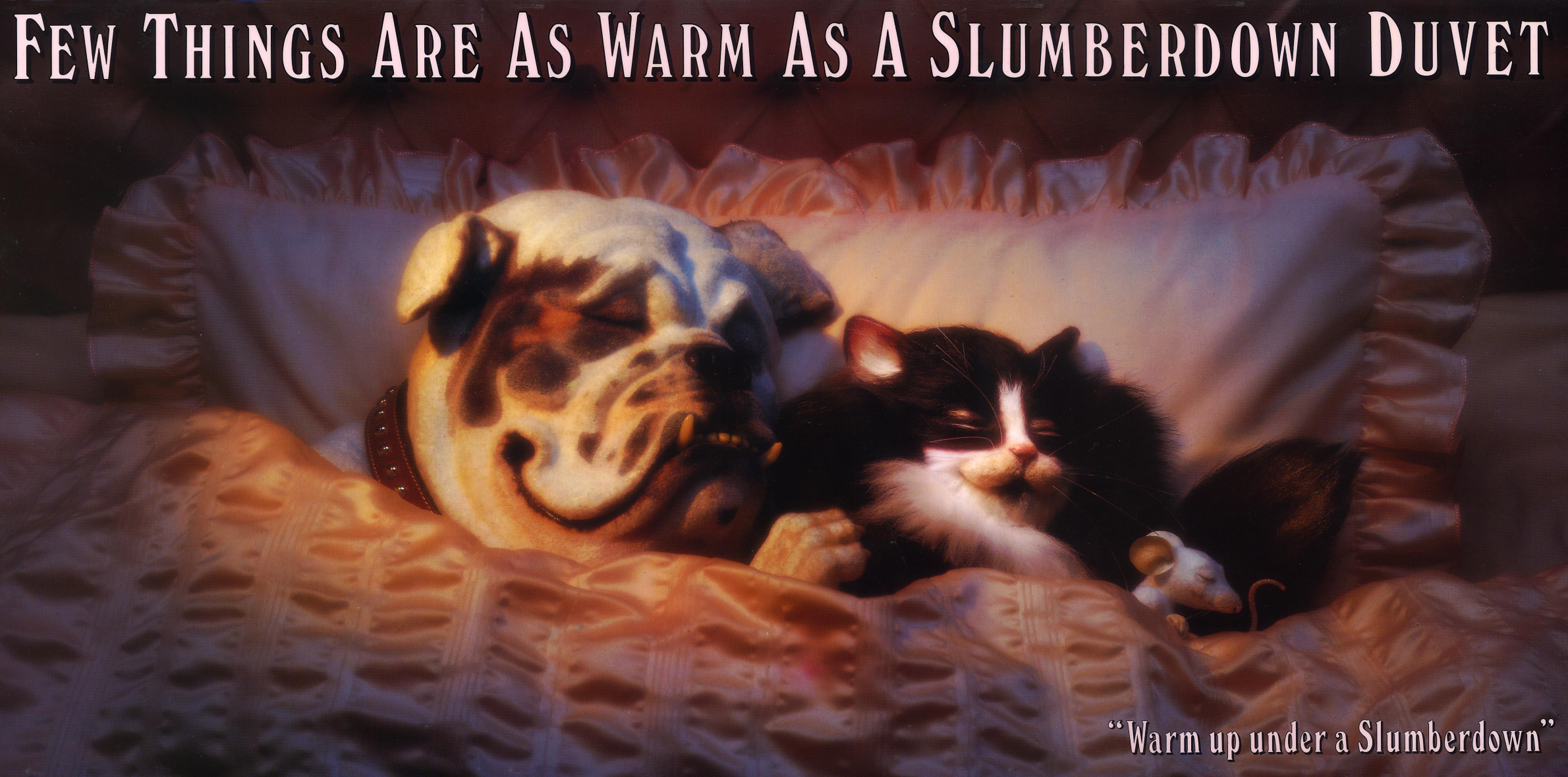 'Dog, Cat and Mouse' Slumberdown, SPDC&J-01.jpg