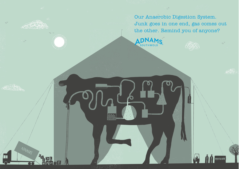 Adnams Press ads DPS 'Cow'.jpg