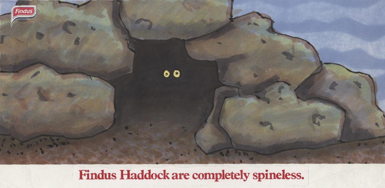 """Findus - """"Spneless Haddock""""-01.jpg"""