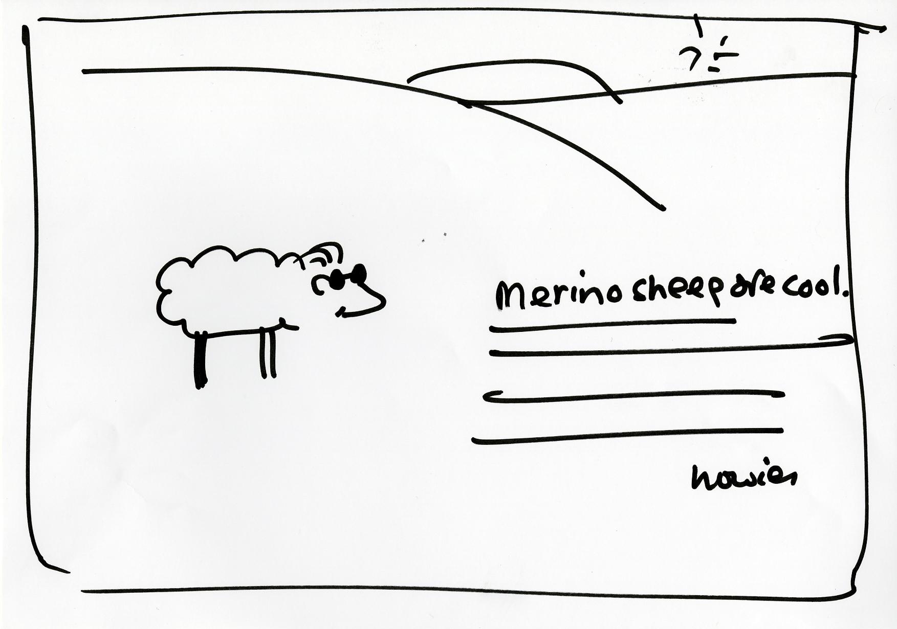'Merino Sheep' Howies, DHM, Rough.jpg