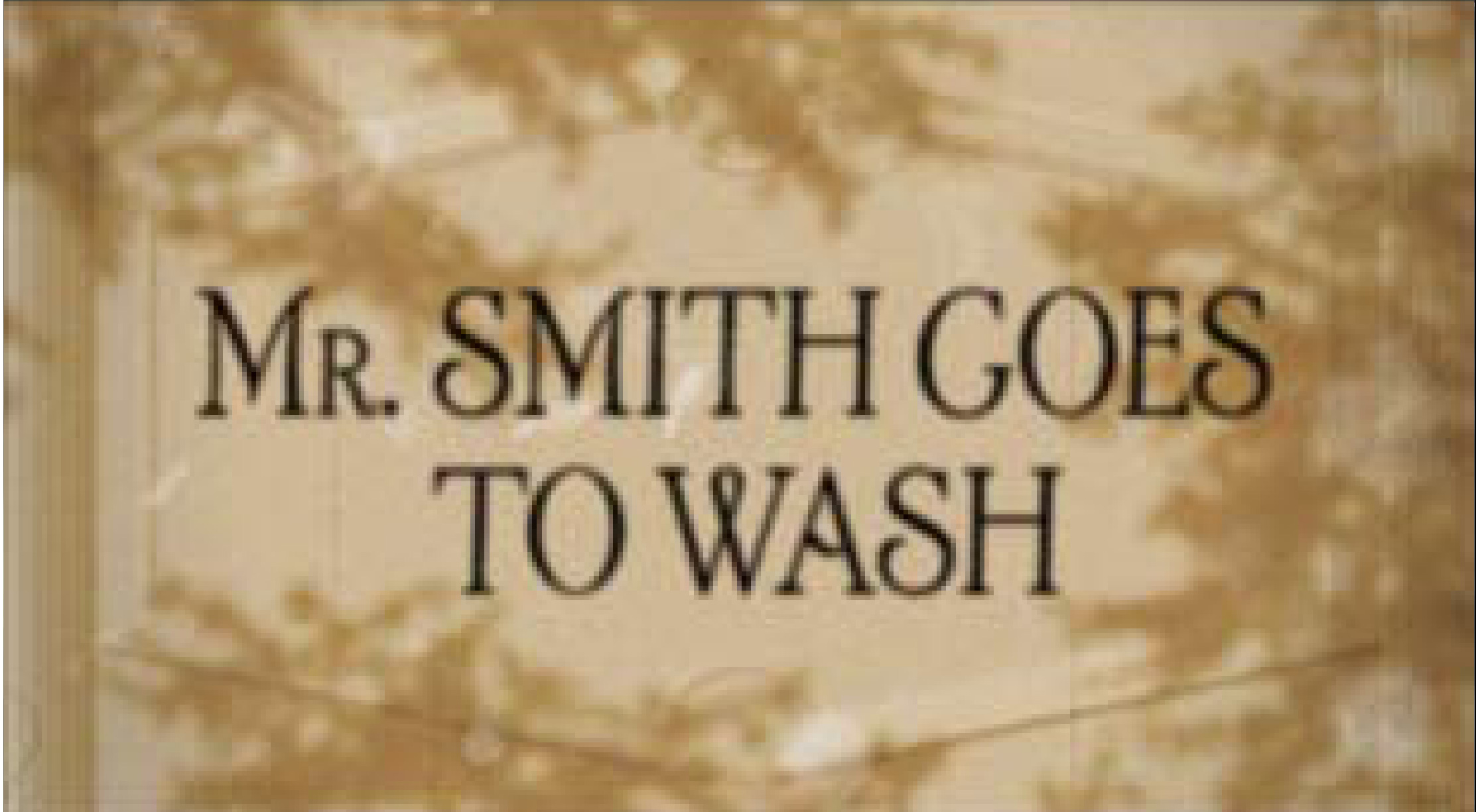 'Mr Smith Single Frame' Therapy Short Film, DHM.jpg