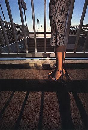 'Railings' Charles Jourdan, Guy Bourdain.jpg