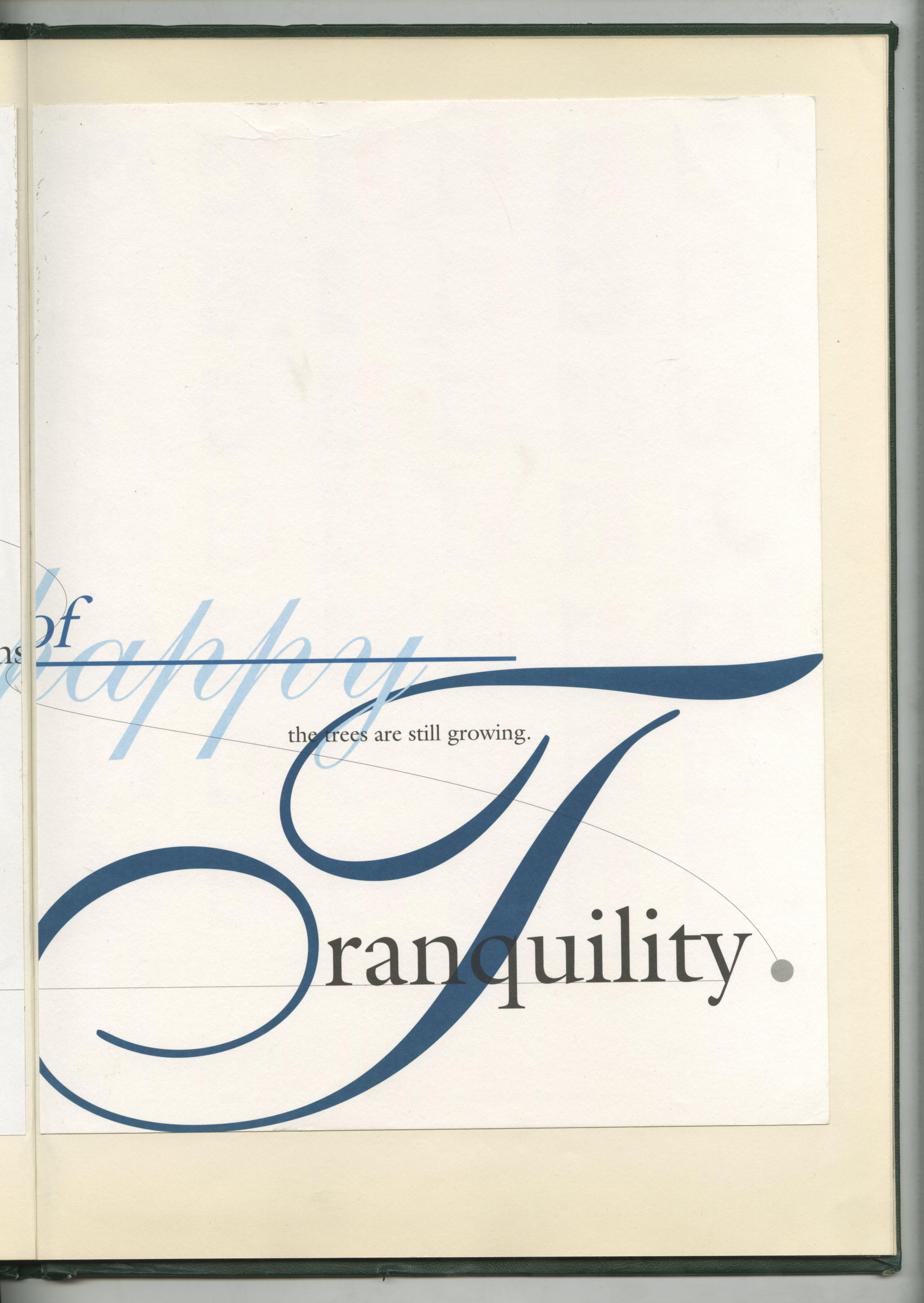 66. Green Book Type 4.jpg