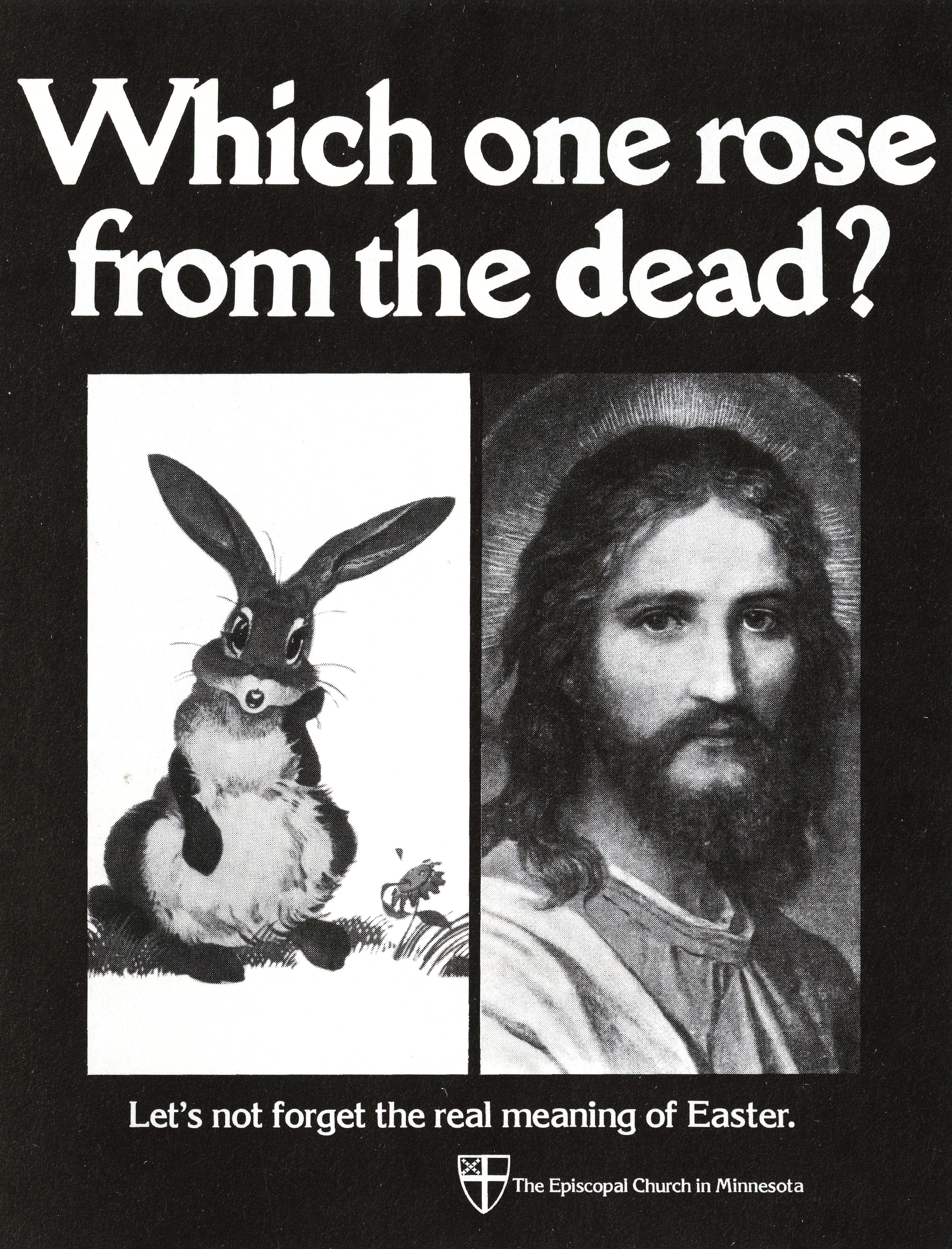 'Which One Rose*' The Episcopal Church, Tom McElligott, Bozell*.jpg